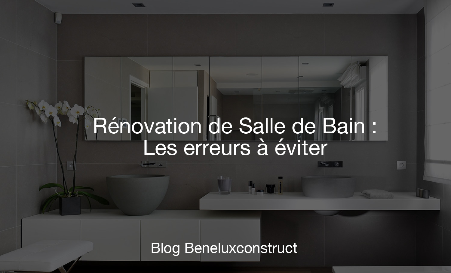r novation de salle de bain les erreurs viter beneluxconstruct. Black Bedroom Furniture Sets. Home Design Ideas